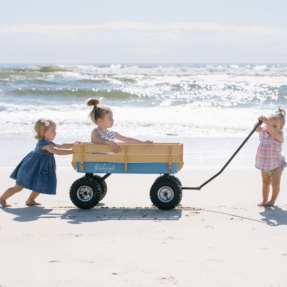 beach-cart-2